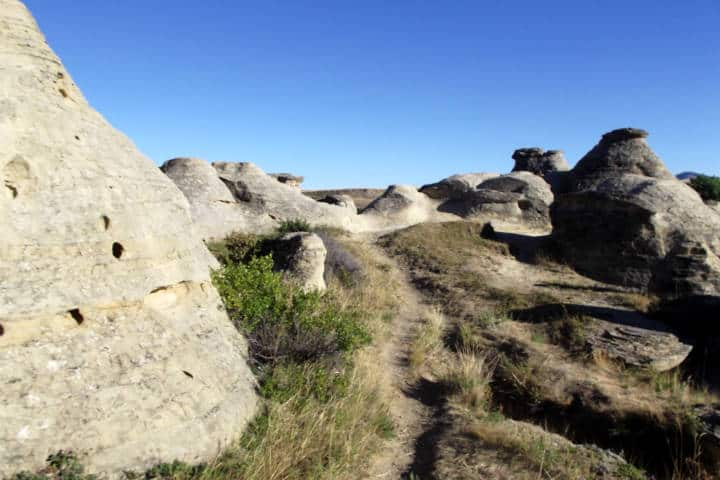 Alberta, máxima experiencia con naturaleza virgen Foto Jason Woodhead