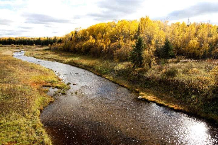 Alberta, máximas experiencias con naturaleza virgen Foto Scott Lough