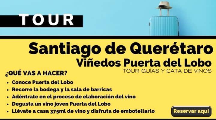 Tour Santiago de Querétaro, viñedos Puerta del Lobo. Arte El Souvenir