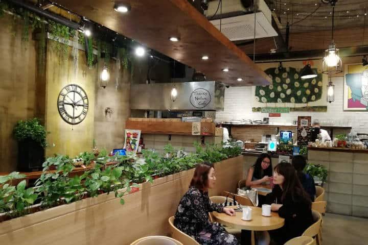 Cafeterías para acariciar mascotas en Seúl 38