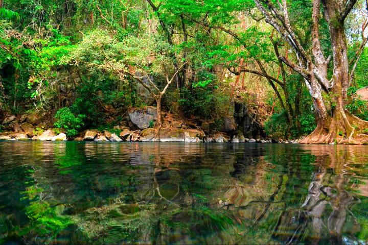 La-poza-verde-en-Tamaulipas-Foto-Food-&-Travel-8