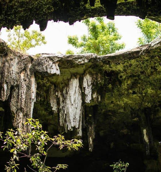 Zacatón, el cenote más profundo del mundo Foto. Pixabay