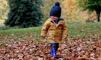 """October Kids Free"" Foto. Pixabay"
