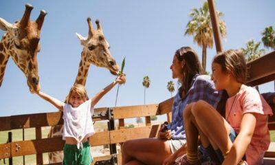 """¿Qué-es-el-""""October-Kids-Free""""?-Foto-San-Diego-Travel-1"""