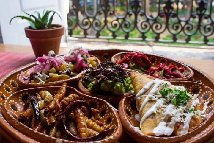 La-gastronomía-es-ilimitada-Foto-El-Horizonte-4