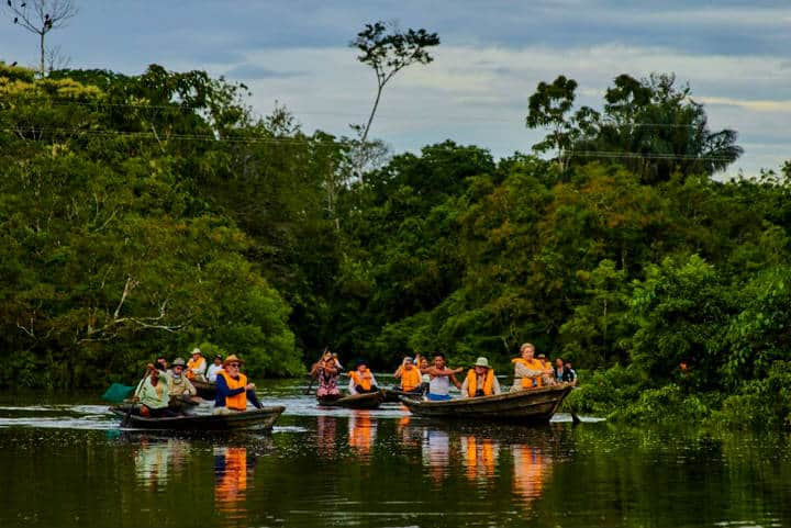 Amazon Cruise Foto Jungle Experiences