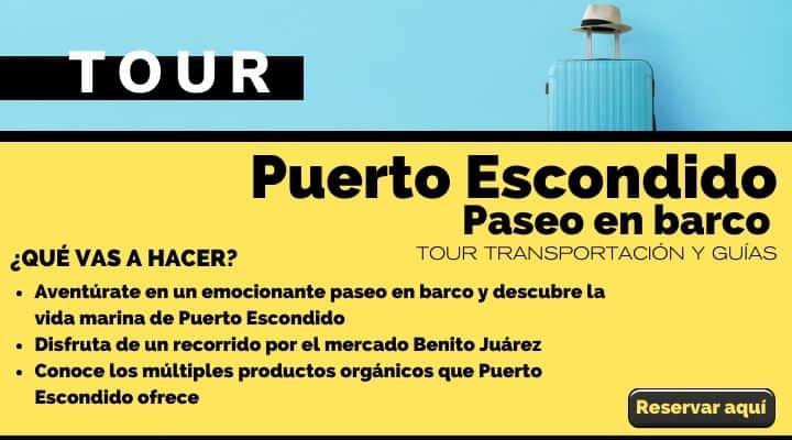 Tour Puerto Escondido, paseo en barco y visita al mercado. Arte El Souvenir