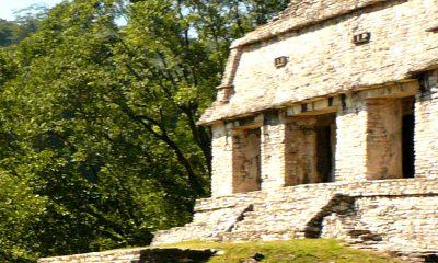 Cómo llegar a Palenque Foto Richard Weil