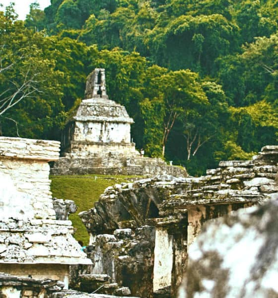 Comó llegar a Palenque Chiapas. Foto: Girl with red hat
