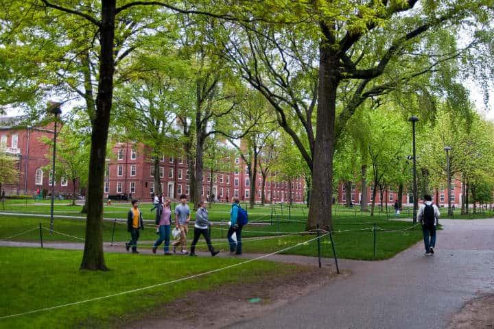 Harvard. Foto Anne Helmond