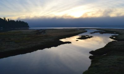 "Laguna-estuario ""Michigan"" Foto. Pixabay"