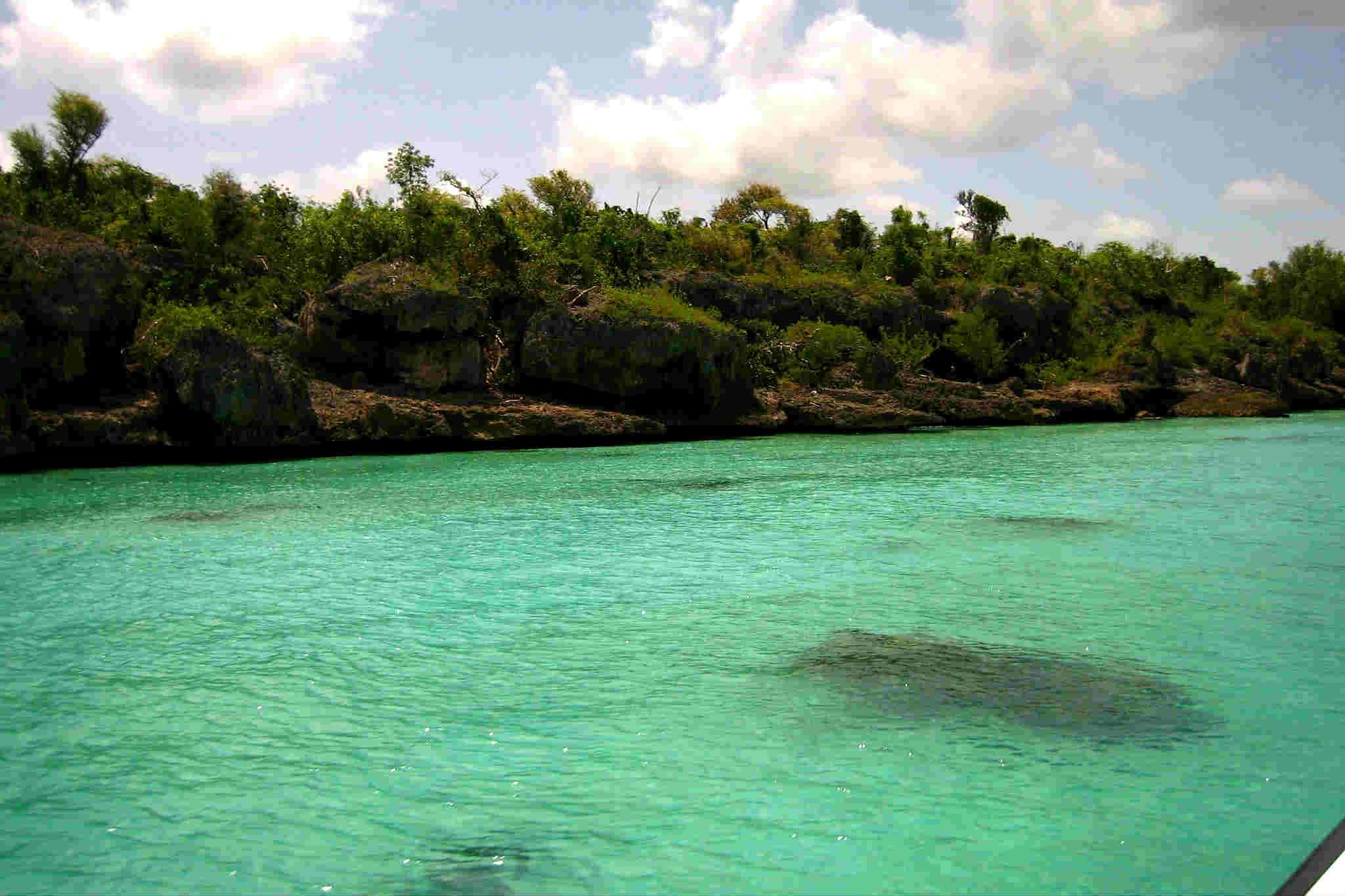 Soana la isla Foto Los Incalificables