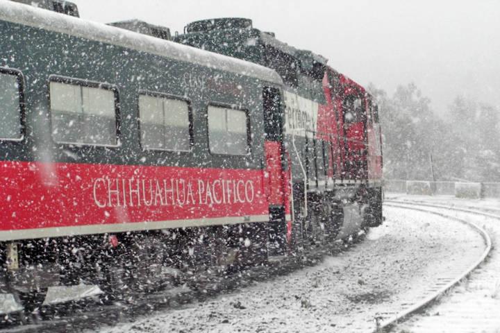 Tren Chepe en la nieve. Chihuahua. Imagen: Ileana Esparza