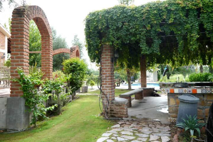 Vino de Sonora Foto El Souvenir 13
