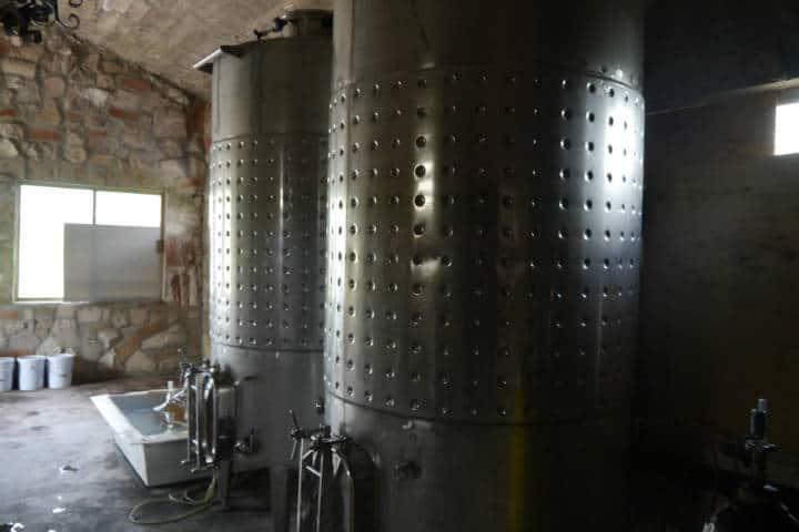Vino de Sonora Foto El Souvenir 2