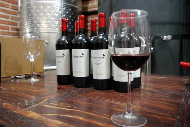 Vino de Sonora Foto El Souvenir 4