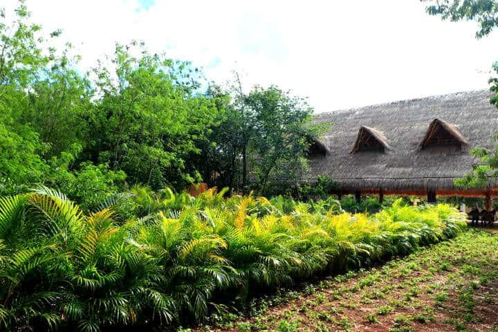 Hacienda Chukum y su Centote Foto Hacienda Chukum