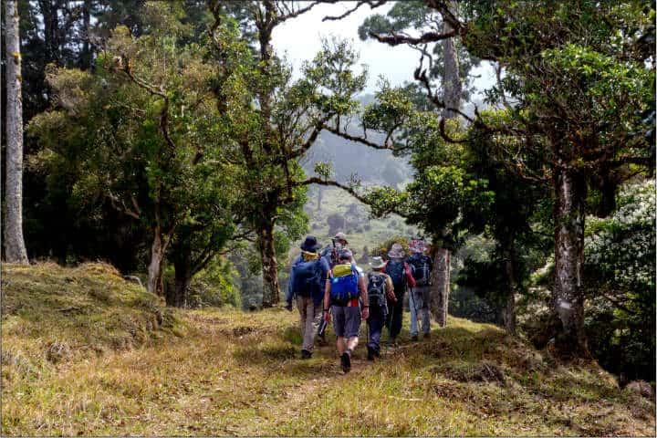 Costa Rica para hacer turismo de naturaleza Foto Maureen Barlin