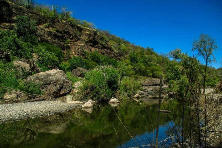 Reserva Ecológica Sierra de Álamos. Foto Biologando con Miguel
