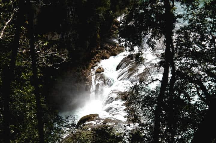 Aventura en la Selva Lacandona Foto AGMEfoto