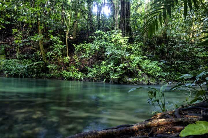 Aventura en la Selva Lacandona Foto Aaron Rodriguez