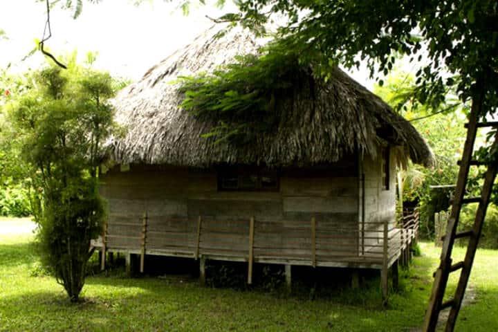 Aventura en la Selva Lacandona Foto Turismo Chiapas