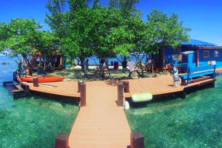 Bird Island, Belice. Foto: Headbng