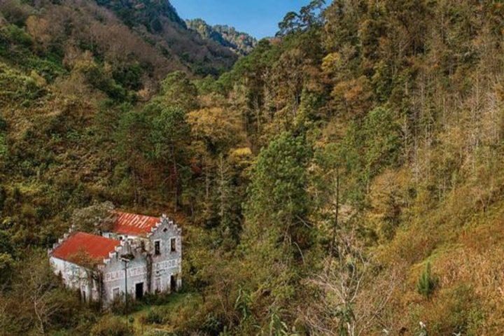Bosque. Foto Archivo