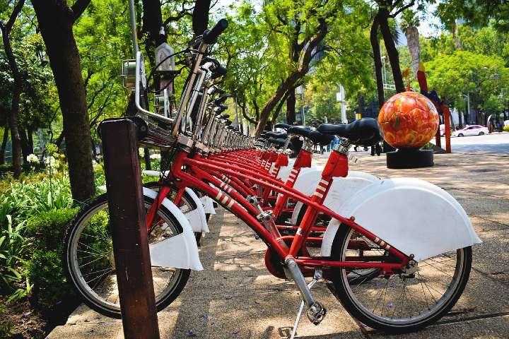 Cómo está la Ciudad de México en turismo. Foto Ángel Chávez.
