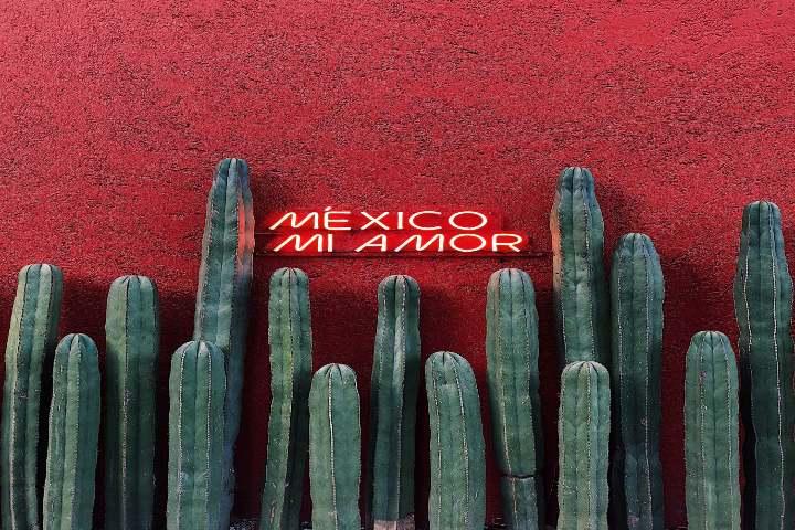 Cómo está la Ciudad de México en turismo. Foto Emir Saldierna en Unsplash.