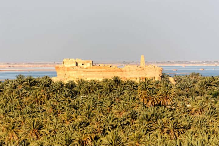 Conocer al increíble Egipto Foto NeferTiyi