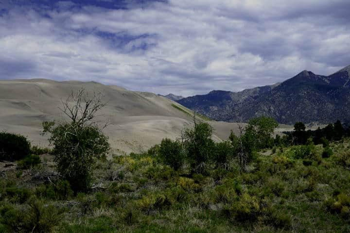 Great Sand Dunes National Park. Foto Daniel