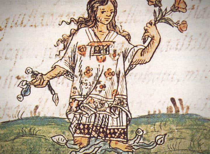 Libro de la Hija de Moctezuma Foto Erizos