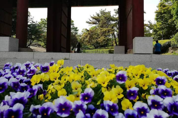 Palacio Gyeonghuigung Seúl Foto El Souvenir 3