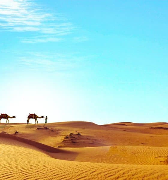 Conocer al increíble Egipto. Foto: Pixabay