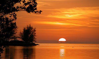 Rentar una isla Foto: Pixabay