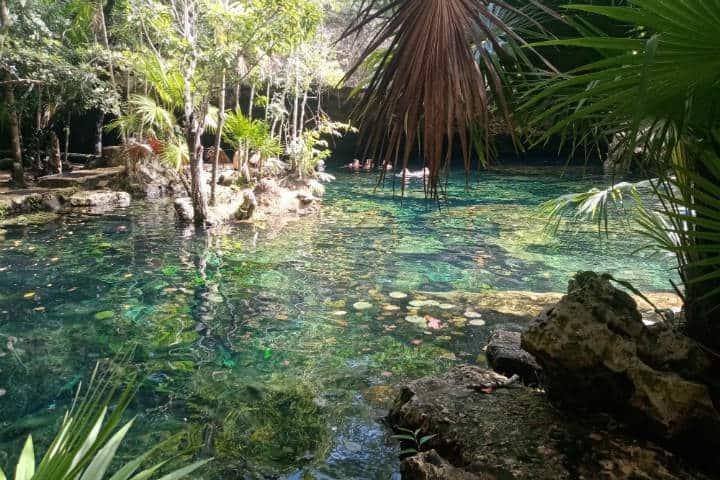 Playa del Carmen sin Sargazo Foto Cenote Aldea Corazón
