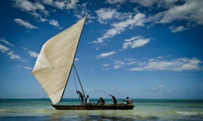 Qué hacer en la isla Zanzíbar. Foto dan80i
