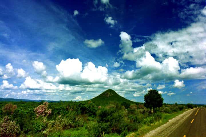 Fotógrafos de naturaleza en Tamaulipas