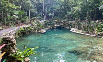 Cenote Boca Del Puma. Foto Ricardo Rojas