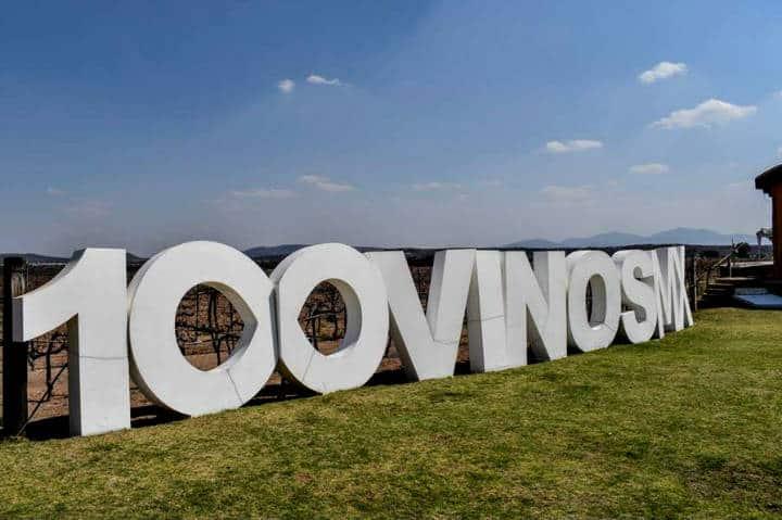 Festival 100 vinos Foto Viñedos la Redonda