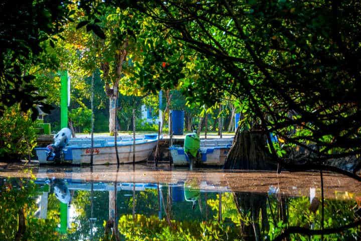 Gozar al máximo de Tepic Foto San Blas Riviera Nayarit