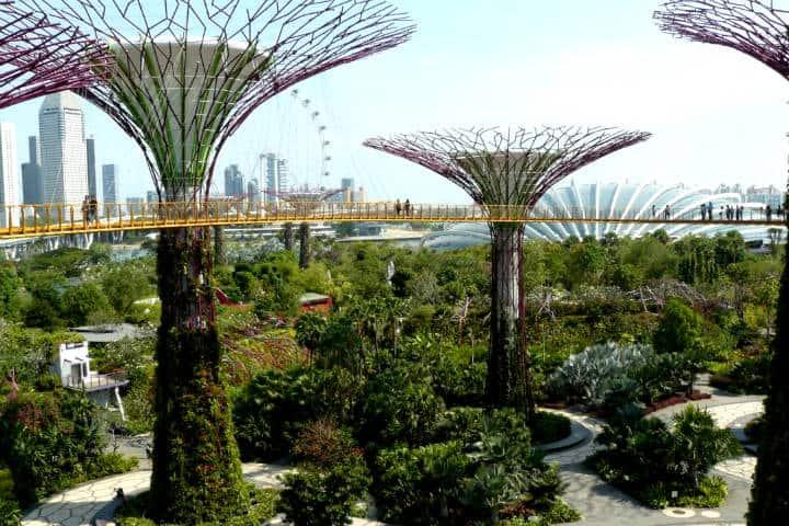 Jardines botánicos Foto El independiente