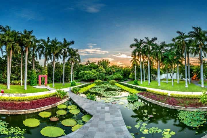 Jardines botánicos Foto Revista espejo