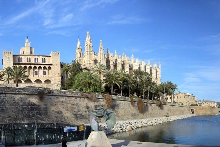 Palma. Foto Vaya Imagen