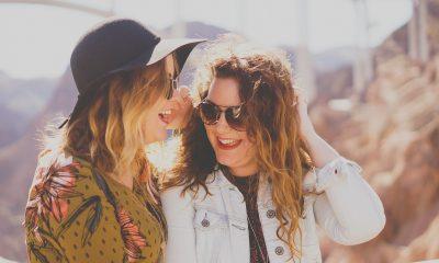 Viajar con tu mejor amigo. Foto: Pixabay