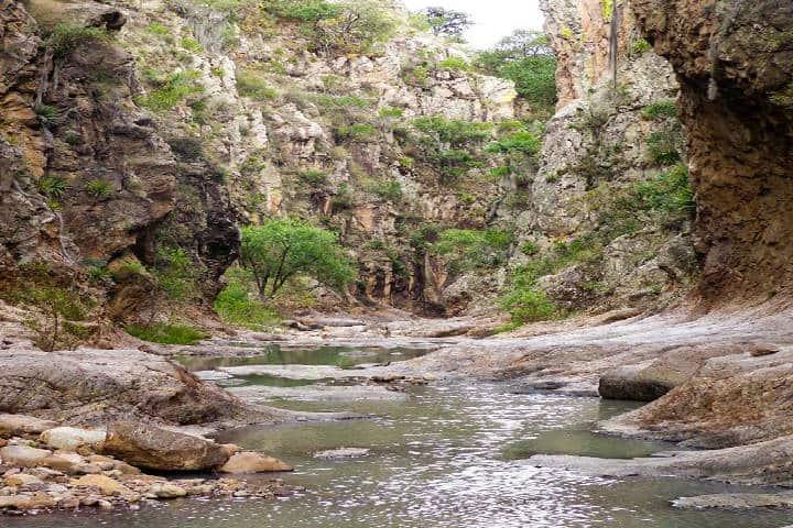 Sierra de los Cardos. Foto León Zuñiga