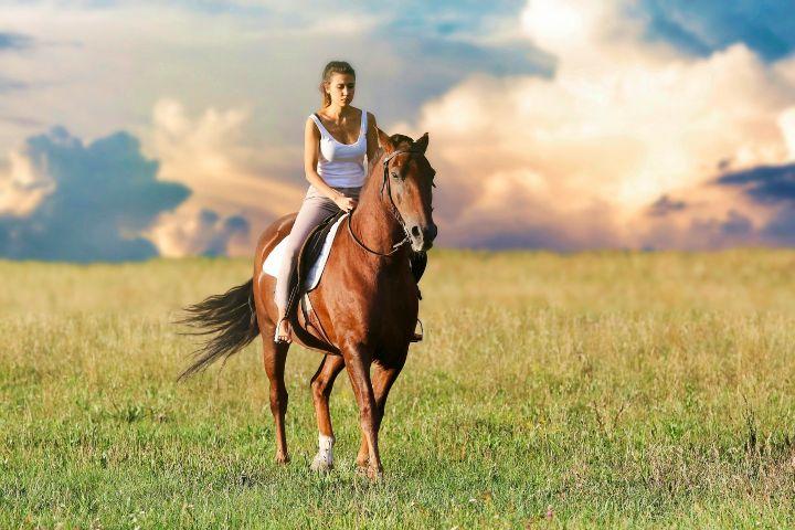 Toma un paseo en caballo. Foto Nicola Giordano.
