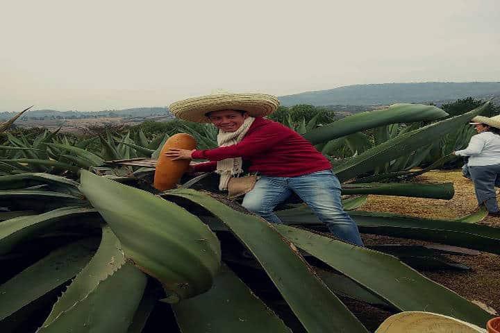 Tour pulquero. foto Secretaría de Turismo del Estado de México