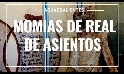 Las momias del Real de Asientos. Foto: Youtube